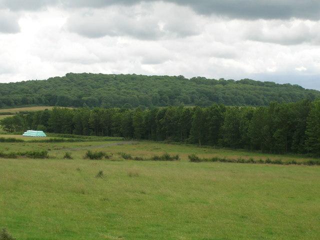 Farmland near Kirk Hill