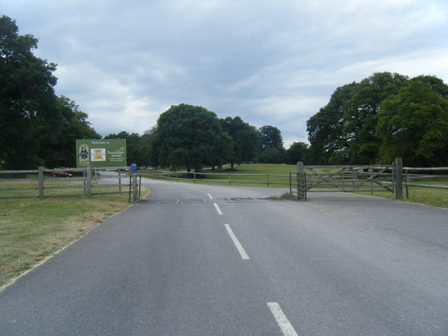 Trentham Estate entrance with cattlegrid