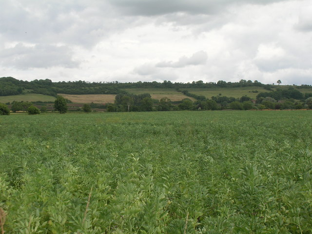 Farmland near  Settrington