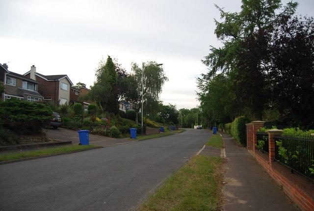 Bin collection day, Church Lane