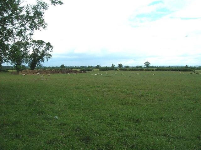 Grazing land west of Settrington