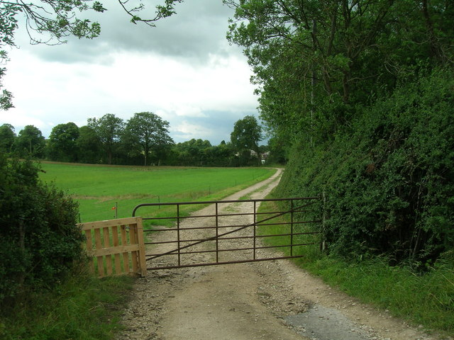 Track to Westfield Pig Farm