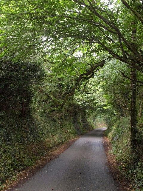 Lane to Melancoose