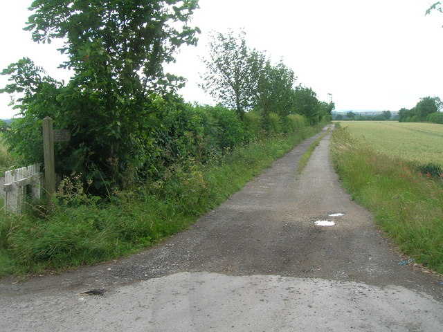 Track to Low Field (footpath)