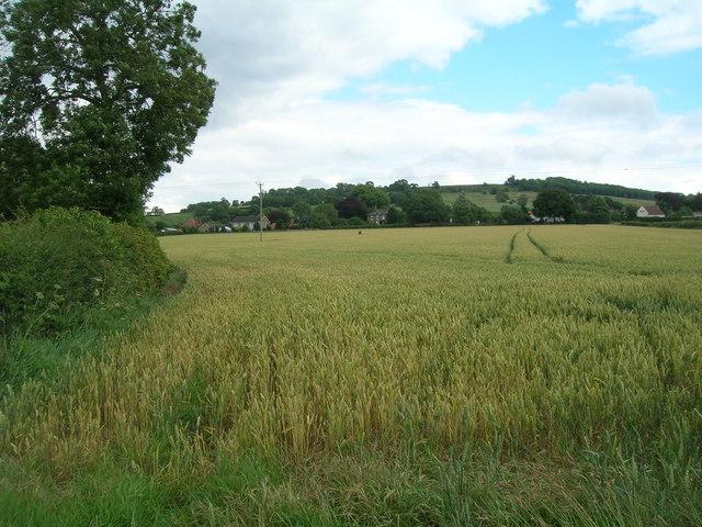 Farmland looking towards Scagglethorpe