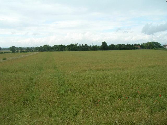 Farmland near Underbrow Farm