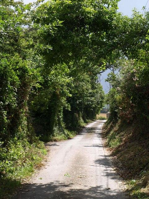 Lane at Trewassick