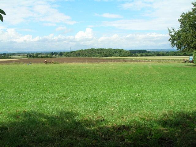 Farmland off Malton Road (A64)