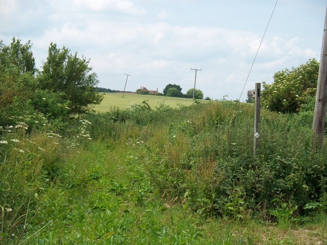 Bridleway meets road