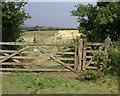 SW8760 : Gate near Lady Nance by Derek Harper