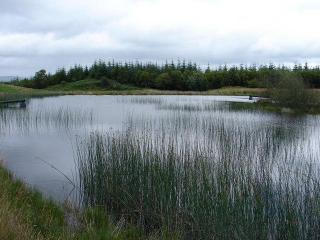 Slogarie farm fish pond chris newman geograph britain for Farm pond fish