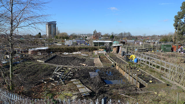 Public allotments, Levenshulme