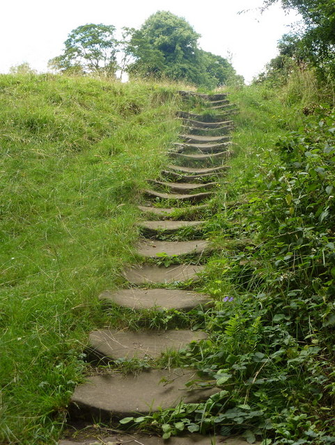 Steps Up The Hillside 169 Andrew Hill Geograph Britain And Ireland