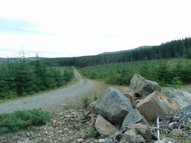 Forest track northeast of Mullachdubh