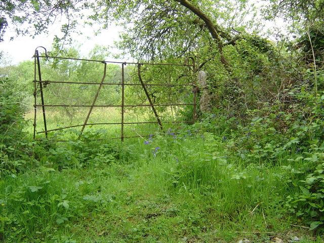 Trenwheal - gate entrance to field