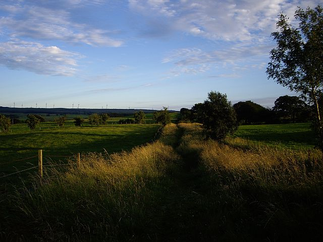 The Weavers' Trail near Brownmuir Holdings