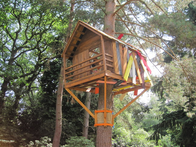 unusual treehouse paddy griffin cc by sa 2 0 geograph britain and ireland. Black Bedroom Furniture Sets. Home Design Ideas