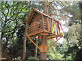 SJ7481 : Unusual treehouse by Paddy Griffin