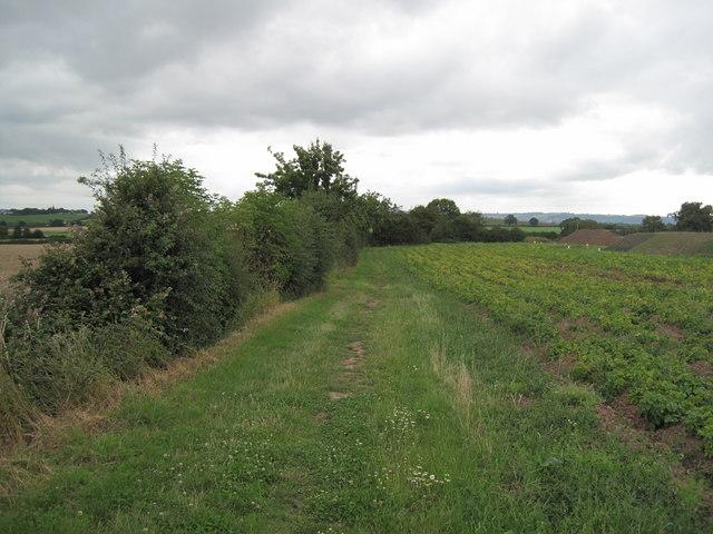 Footpath by Guilden Sutton