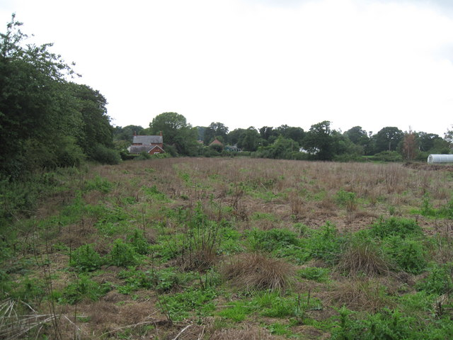 Farmland in Hollowmoor Heath