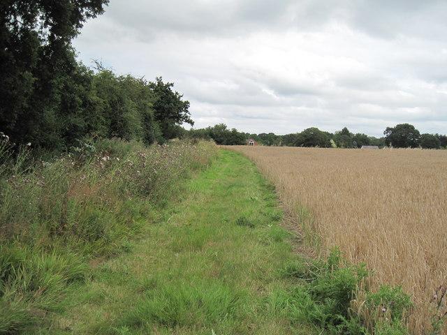 Longster Trail near Swinfordmill Farm