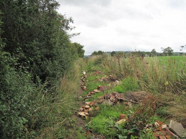 Disused Lane near Lowerhall Farm