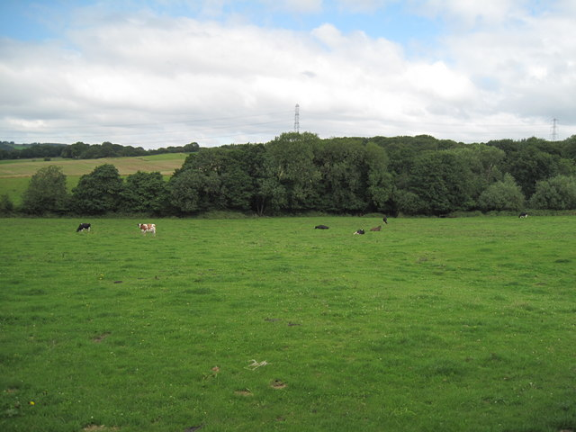 Farmland near Alvanley