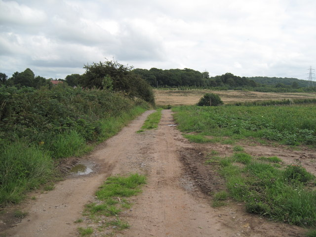 Footpath to the Road