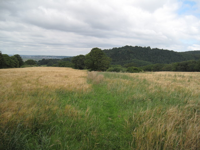 Footpath and Sandstone Ridge