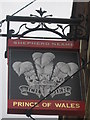 TR1868 : Prince of Wales Pub Sign (2) by David Anstiss