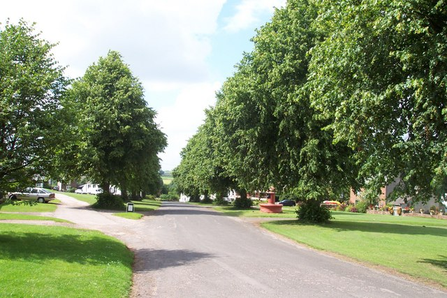 Dufton's avenue of limes