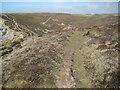 SW6746 : Coast path above Sally's Bottom by Philip Halling