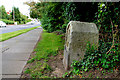 J1244 : Milestone, Banbridge (1) by Albert Bridge