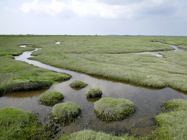 Marshland east of the River Douglas