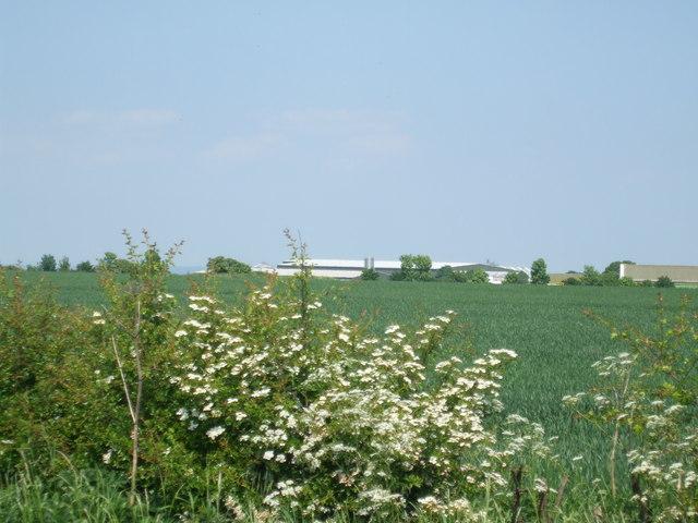 Fields towards Hemswell Industrial estate