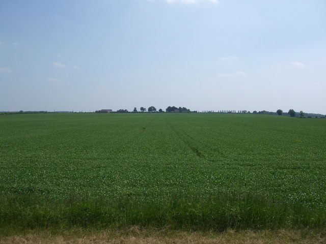 Fields towards Grayingham Cliff Farm