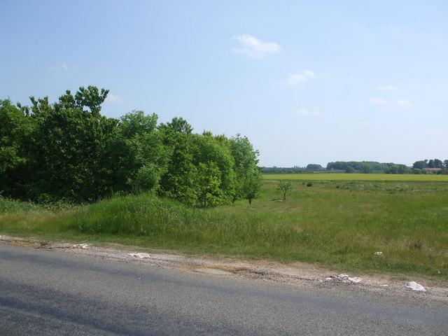 Fields towards Grayingham Grange