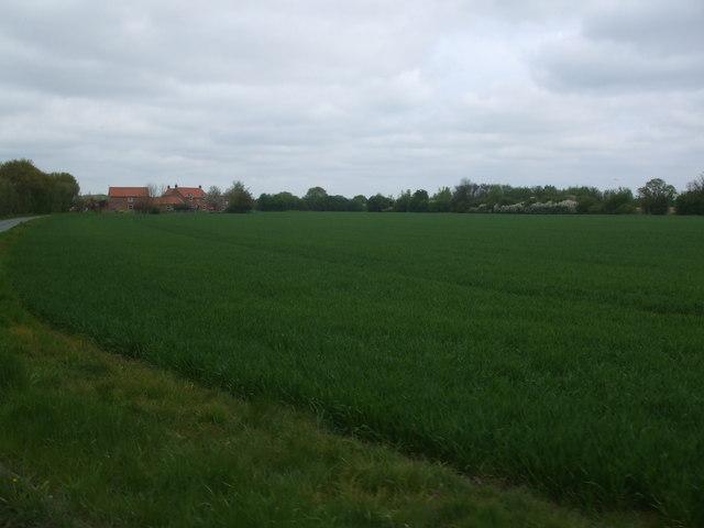 Fields to Fir Tree Farm, Biggin