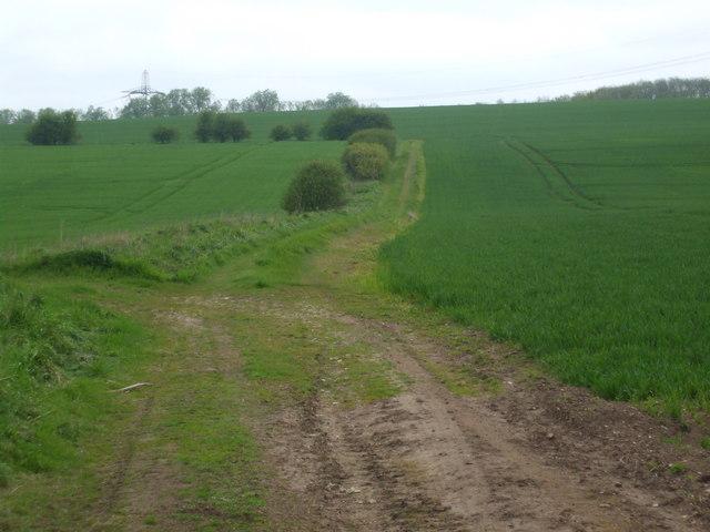 Farm Track near Burton Salmon