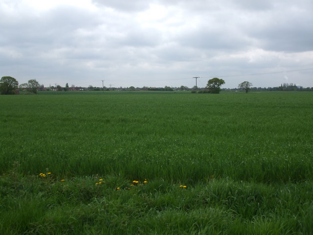 Fields towards Selby