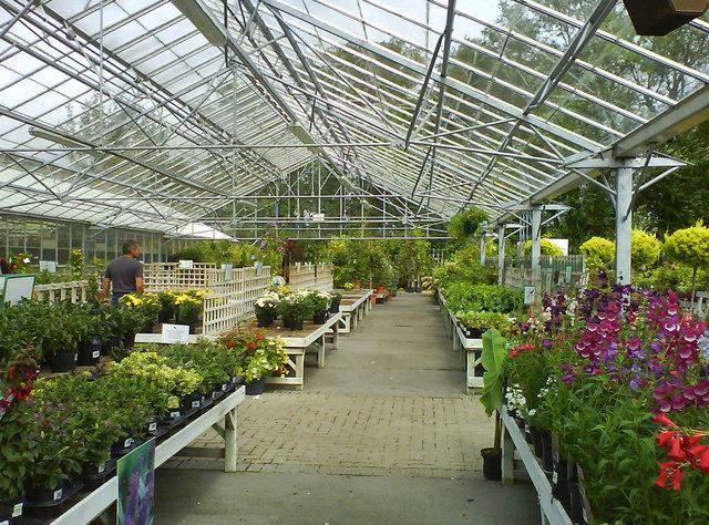 Garden Centre: Lechlade Garden Centre © Steve Daniels Cc-by-sa/2.0