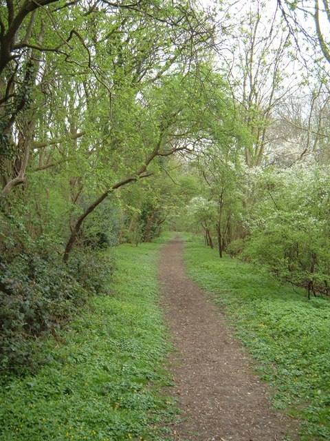 Footpath through Crow Green