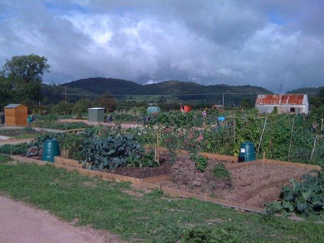 Gardens in Dalbeattie