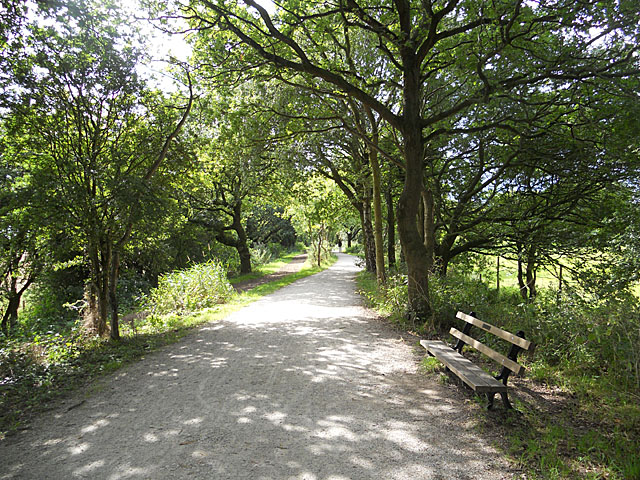Cycleway (NCR 56), bridleway & a resting place