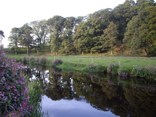 White Cart Water at Waterfoot