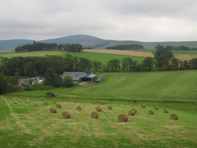 Mill of Kintocher: hay-making