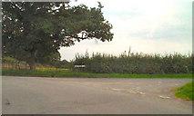 SJ5649 : Wrenbury Road/Holtridge Lane Junction by David Dixon