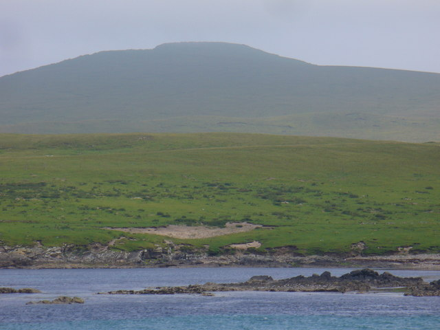noss and bressay Seabirds-and-seals' famous noss boat trip visits the spectacular seabird cliffs of noss national nature reserve, plus grey seals, harbour seals and amazing underwater views of kelp forest, corals and plankton.