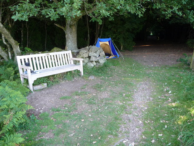Wild camp beside Offa's Dyke Path in Racecourse Wood