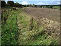 SE3101 : Footpath towards Cliffe Farm by Chris Wimbush